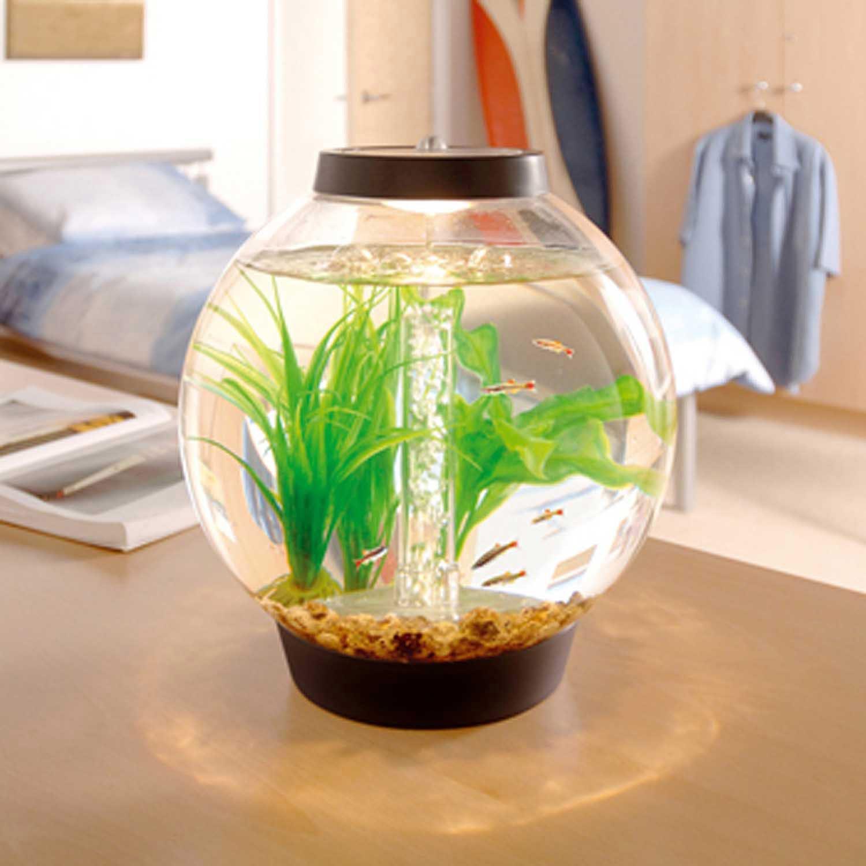 Baby biOrb Black Aquarium Kit