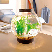 Baby biOrb Black Aquarium Kit