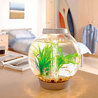 Baby biOrb Silver Aquarium Kit