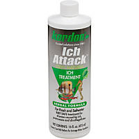 Kordon Ich Attack for Fresh & Saltwater Aquariums