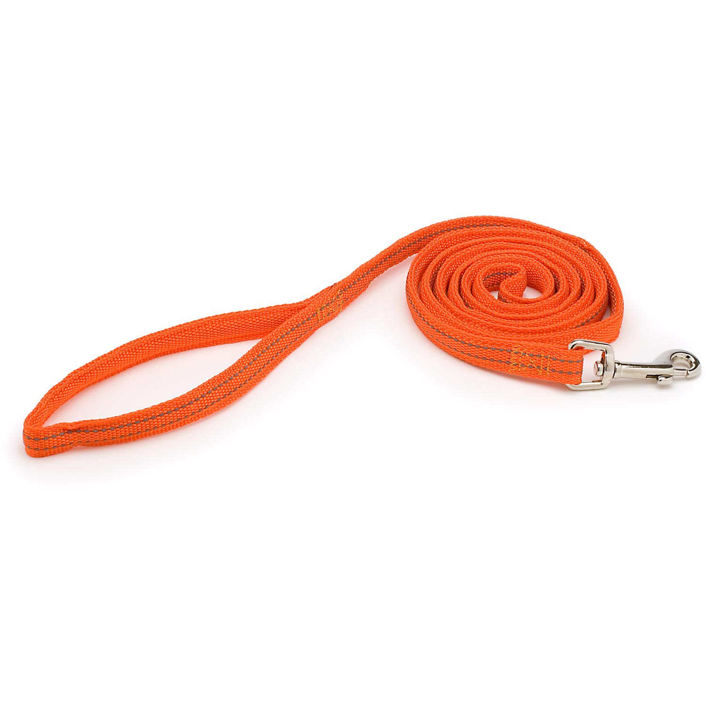 "Aspen Pet by Petmate Nylon Reflective Padded Dog Leash in Orange, 5/8"" Width"
