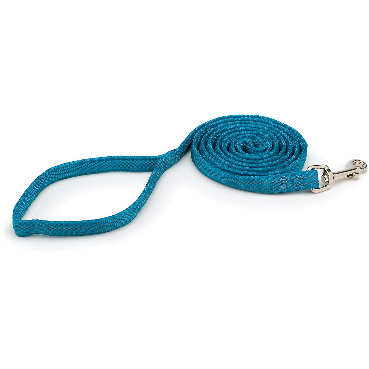 """Aspen Pet by Petmate Nylon Reflective Padded Dog Leash in Teal, 5/8"""" Width"""