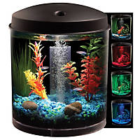 Petco 360 View Aquarium Kit
