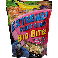Brown's Extreme! Fruit & Nut Big Bites Treat