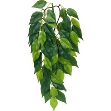 exo terra silk ficus jungle plant petco