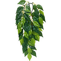 Exo-Terra Silk Ficus Jungle Plant