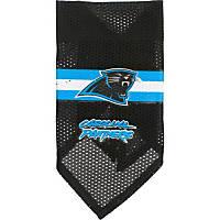 Carolina Panthers NFL Dog Bandana