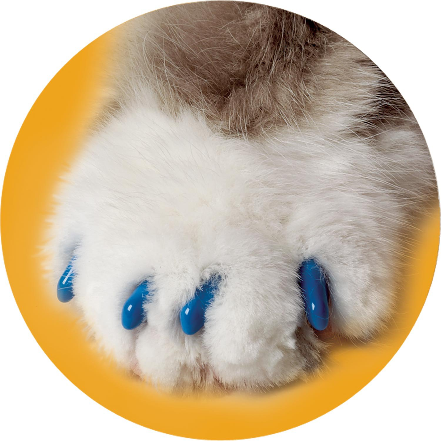Soft Claws Blue Cat Nail Caps Petco