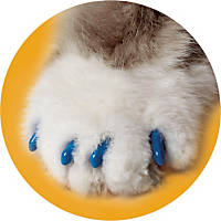 Soft Claws Blue Cat Nail Caps