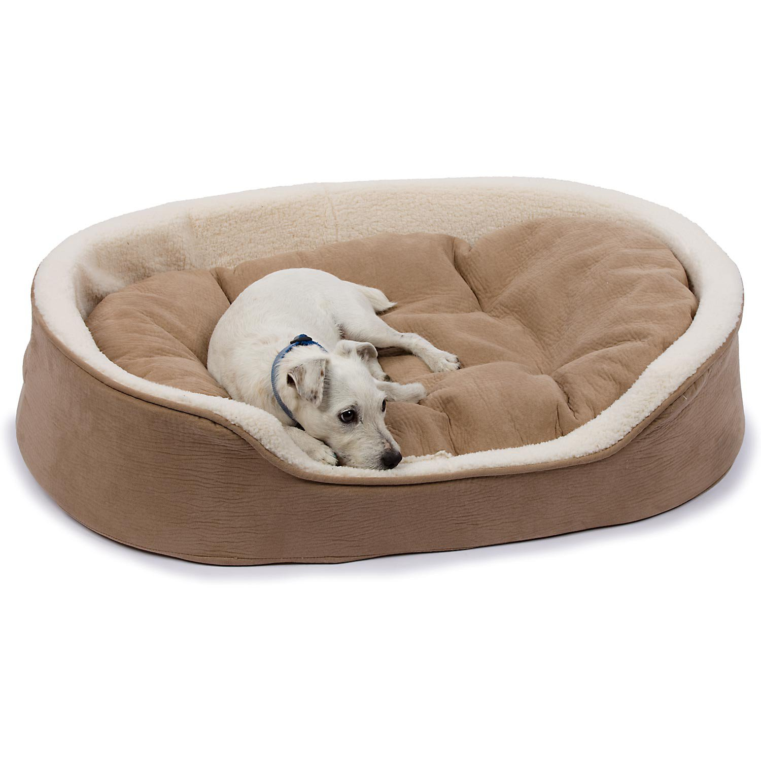 juneclaypool doggie best beds bed on pink a kittens cute princess dog images and puppy pinterest for