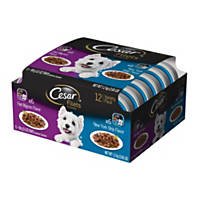 Cesar Gourmet Filets New York Strip & Filet Mignon Variety Pack Adult Dog Food