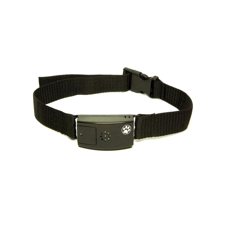 Pet Tags Adjustable No Bark Dog Collar