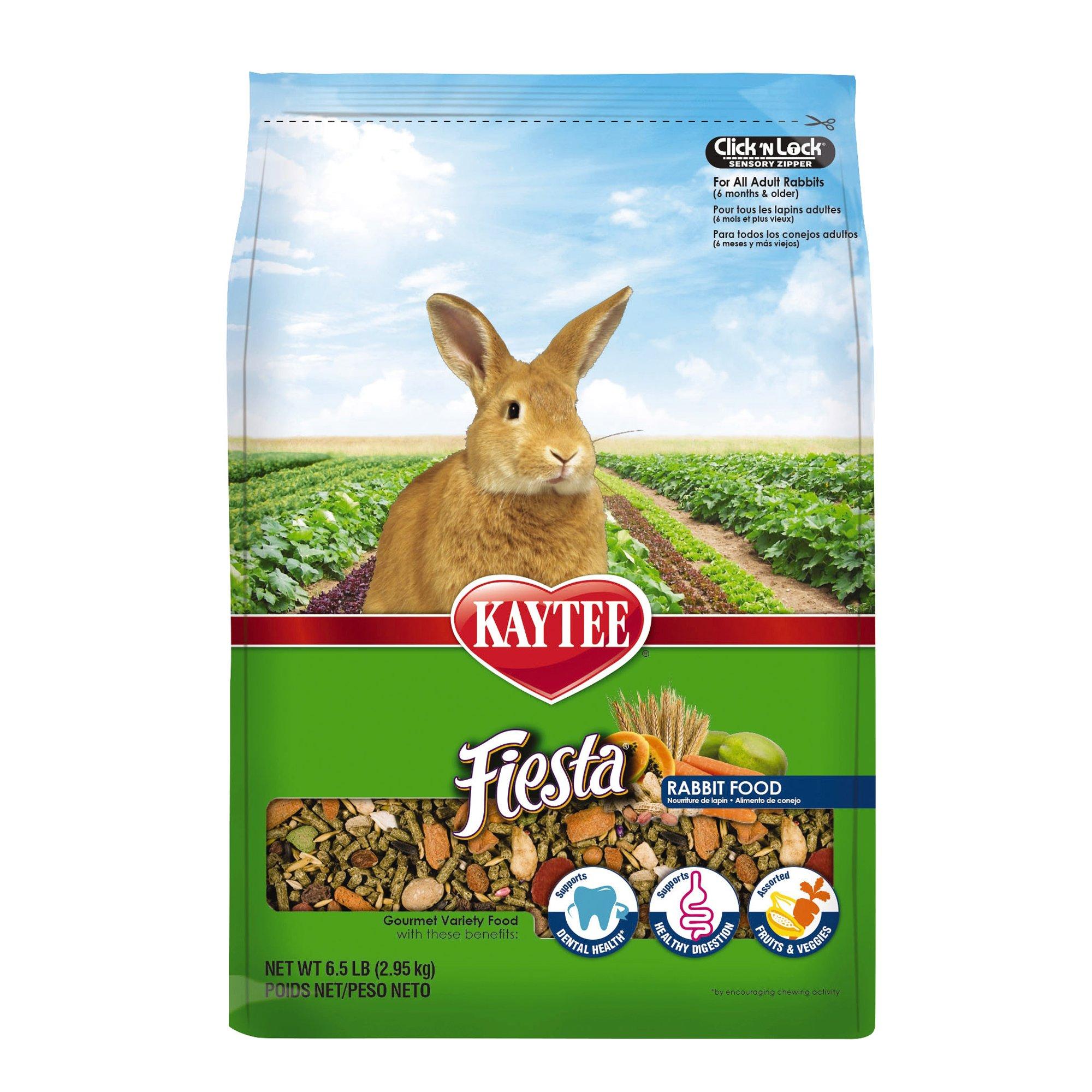 Kaytee Fiesta Food for Rabbits