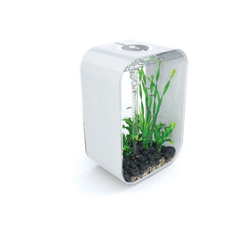 biOrb Life 45P Aquariums