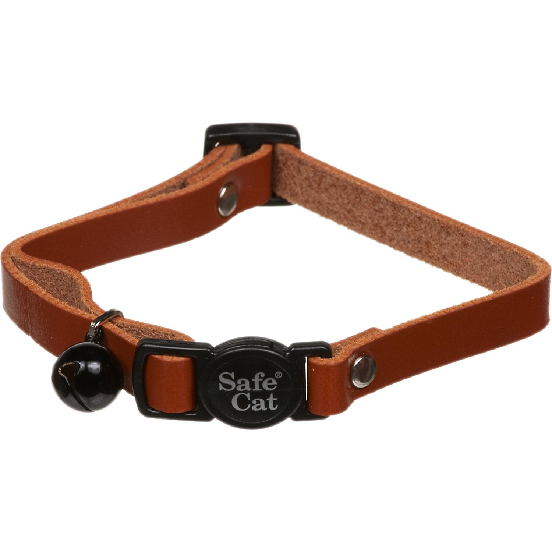 Petco Cat Breakaway Collar in Brown Leather