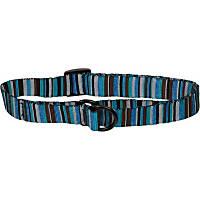 Bison Pet Turquoise Adjustable Nylon Dog Slip Collar