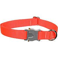 Bison Pet Bulldog Blazing Orange Adjustable Dog Collar, 15-24' L