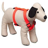 Bison Pet Blazing Orange Adjustable Nylon Dog Harness
