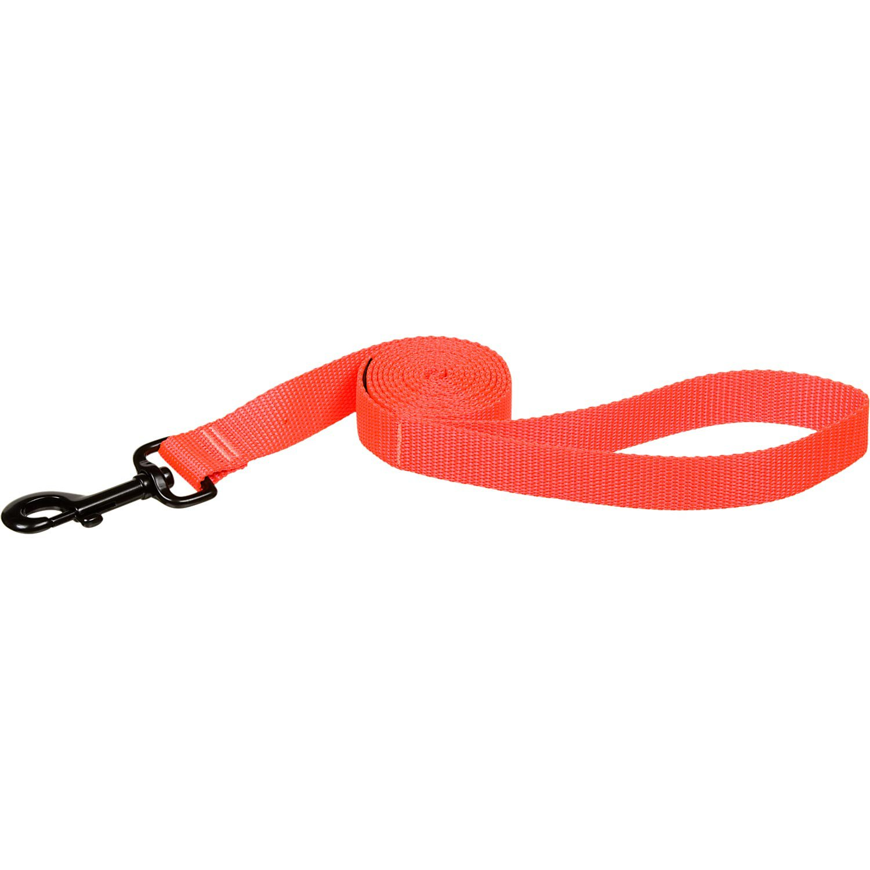 Bison Pet Blazing Orange Nylon Dog Leash