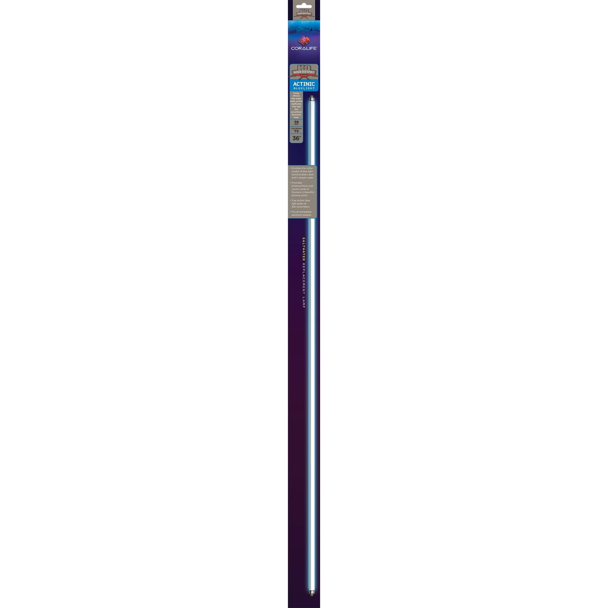 24 T5 Ho Aquarium Light Hood 2x24w Lamp Fixture: Coralife T5 High Output True Actinic Aquarium Lamp