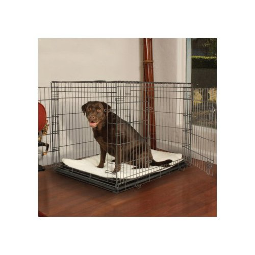 2 door dog crate with divider 2