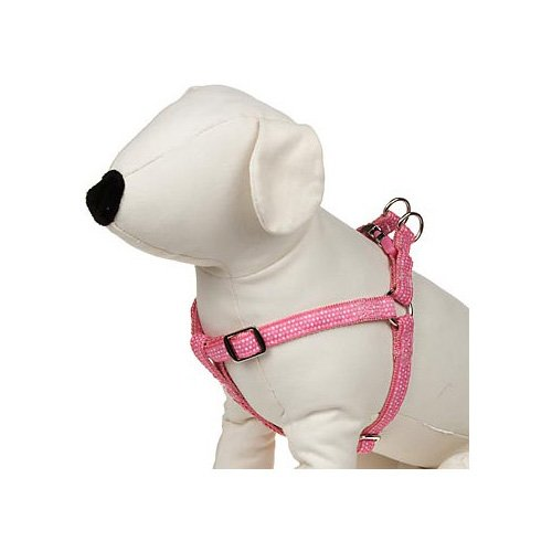 How To Put On Petco Dog Harness Actual Sale