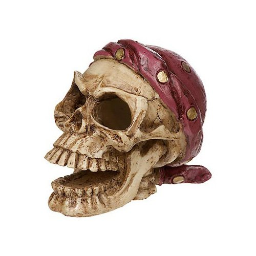 Petco Pirate Skull Aquatic Decor