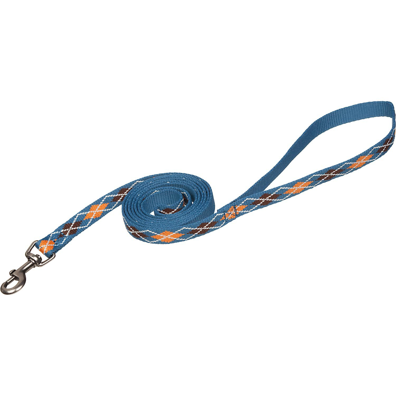 Planet Petco Argyle Eco Dog Leash