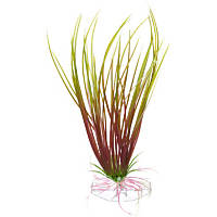 Petco Green & Red Hairgrass Foreground Plastic Aquarium Plant