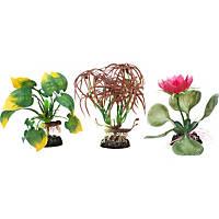 Petco Floral Aquarium Plant