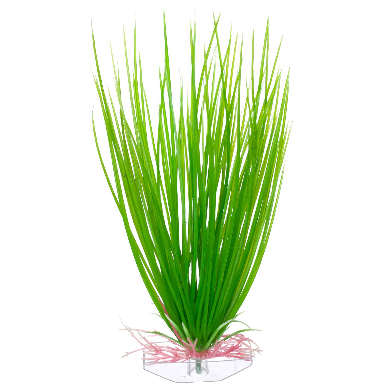 Midground Aquarium Plants : plants store - Petco Green Hairgrass Midground Plastic Aquarium Plant ...