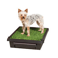 The Pet Loo Indoor Yard Training System for Dogs & Cats