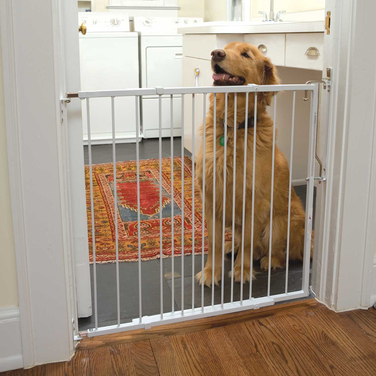 Cardinal Gates White Duragate Pet Gate