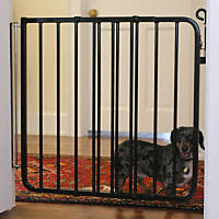 Cardinal Gates Black Auto-Lock Pet Gate