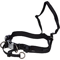 Petco Black Non-Pull Head Halter for Dogs