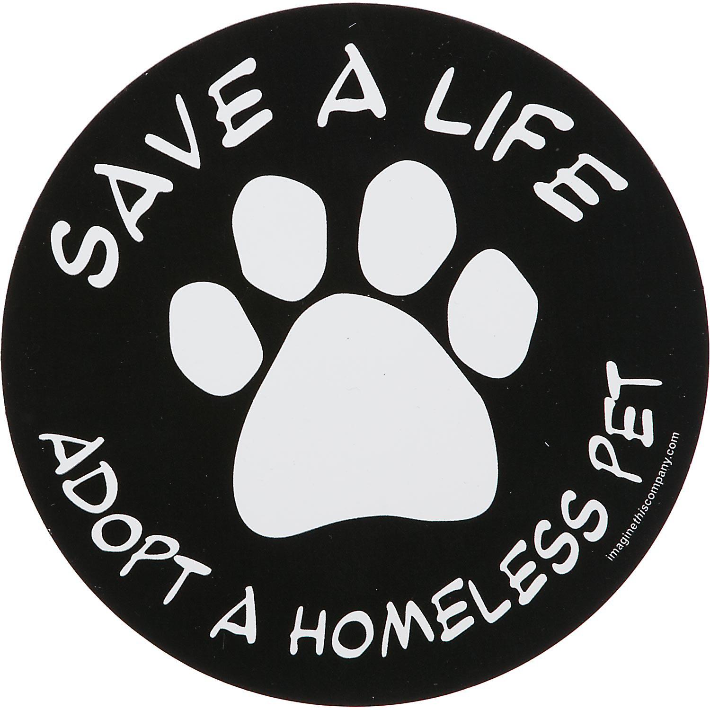 Imagine This Save A Life Adopt A Homeless Pet Car Magnet