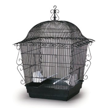 Prevue Hendryx Designer Scrollwork Series Jumbo Tiel Scrollwork Bird Cage in Black