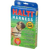 The Company of Animals Halti Dog Harness