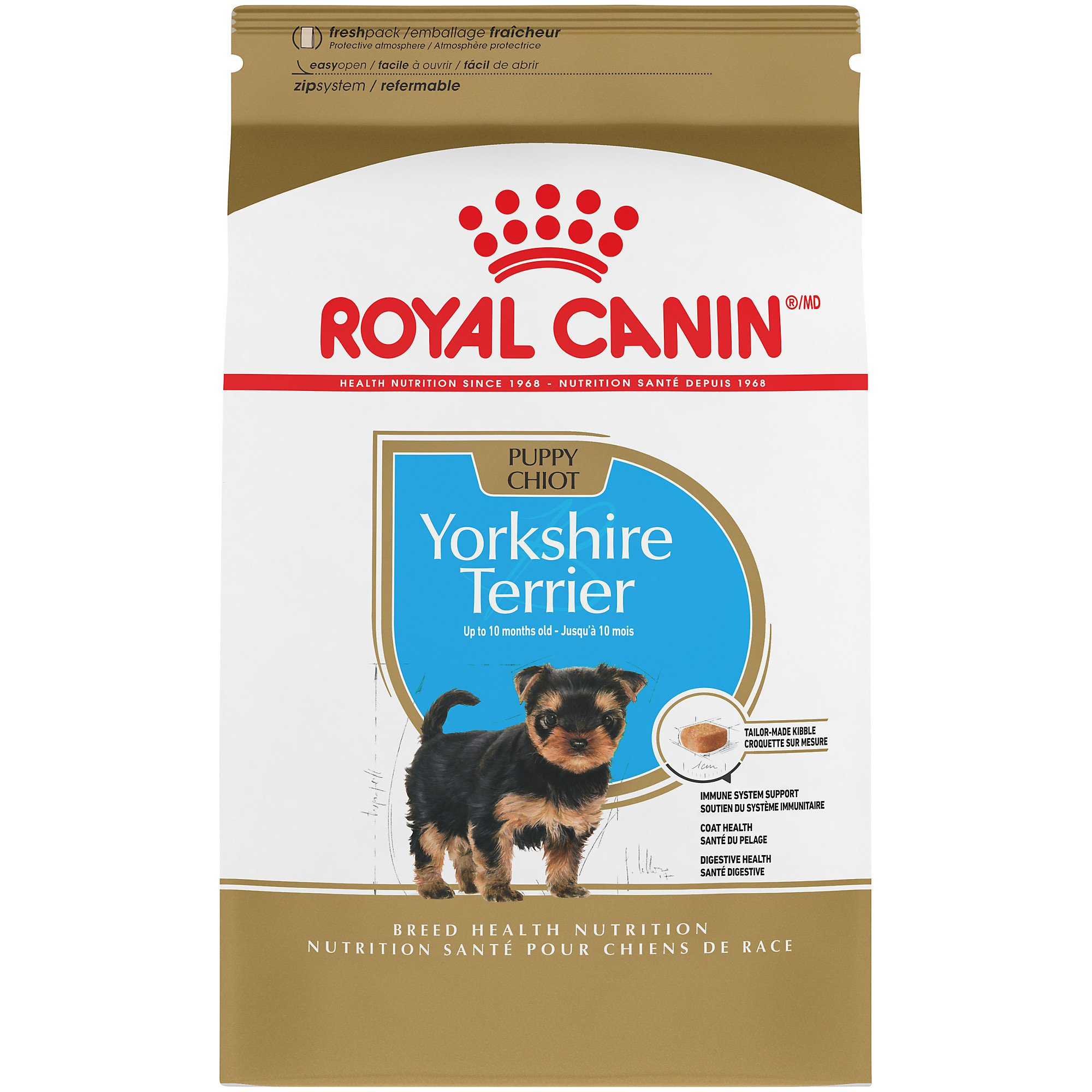 Yorkshire terrier puppy feeding guide