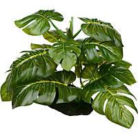 Petco Araceae Terrarium Plant Reptile Decor