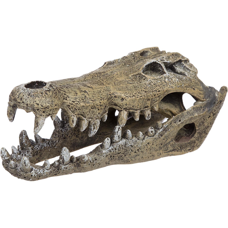 Blue ribbon nile crocodile skull aquarium ornament petco for Petco small fish tank