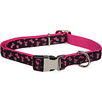 Petco Adjustable Black & Pink Skull Print Dog Collar