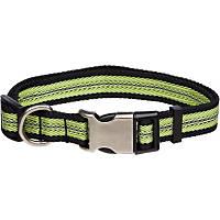 Petco Reflective Adjustable Green Dog Collar