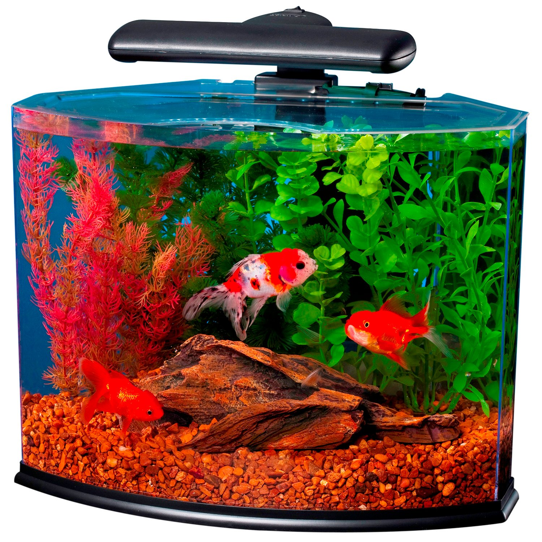 Tetra crescent desktop aquarium kits petco for Kit aquarium