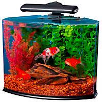 Tetra Crescent Desktop Aquarium Kits