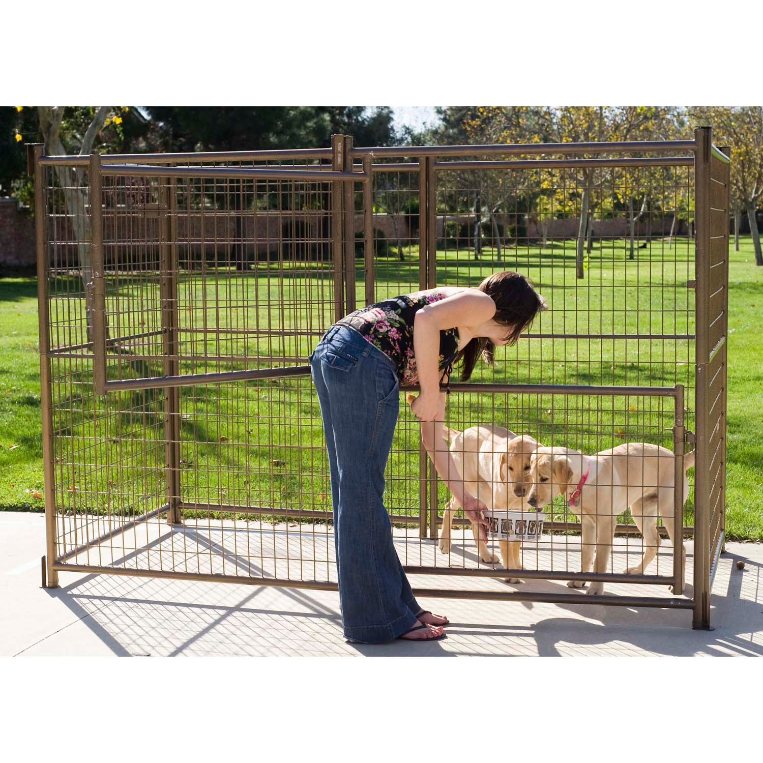Advantek modular outdoor dog kennel petco for What is dog boarding