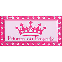 Hillman Sign Center -- Princess on Property