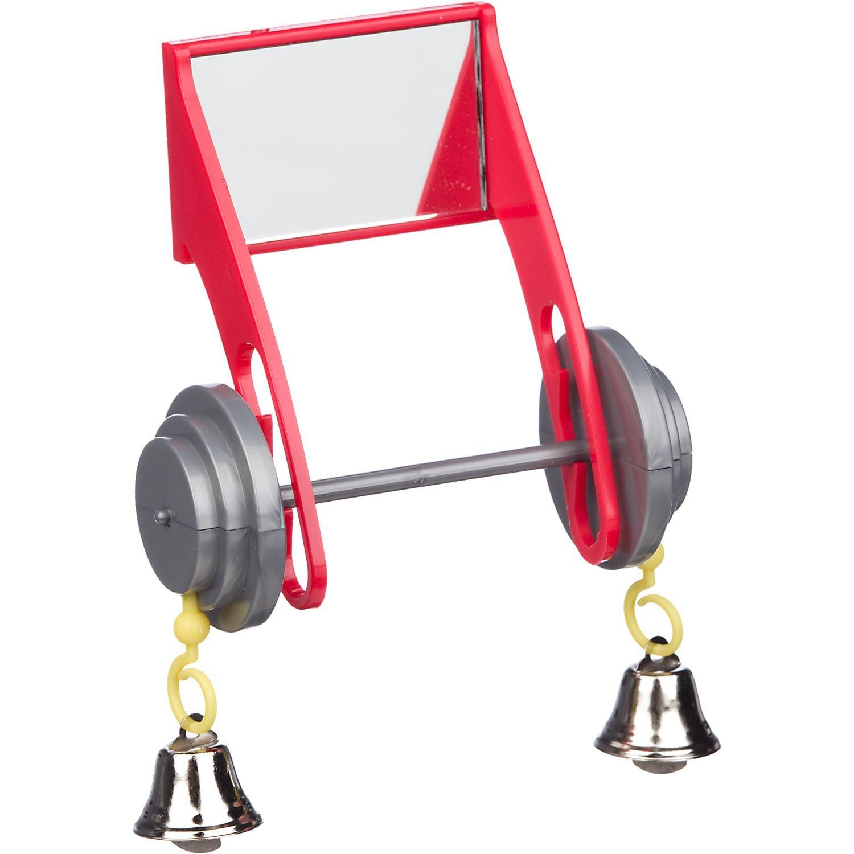 Insight ActiviToys Mirrored Barbell Bird Toy