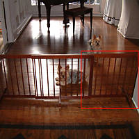 Cardinal Gates Walnut Step-Over Pet Gate Extension