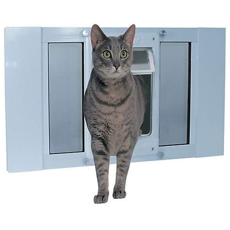 Amusing chubby cat pet door are available?